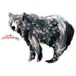Josie Shenoy Bear