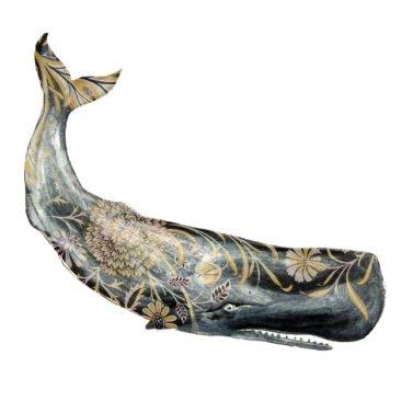 Josie Shenoy Whale