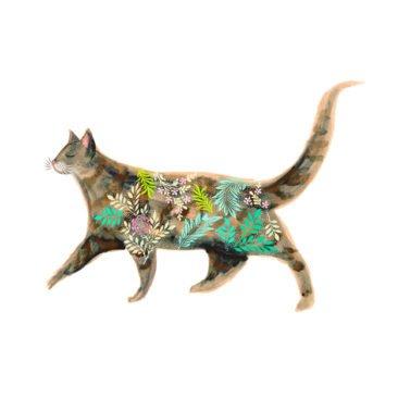 Josie Shenoy Cat