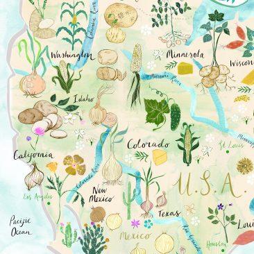 McCain Map Josie Shenoy