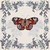 Josie Shenoy Butterfly